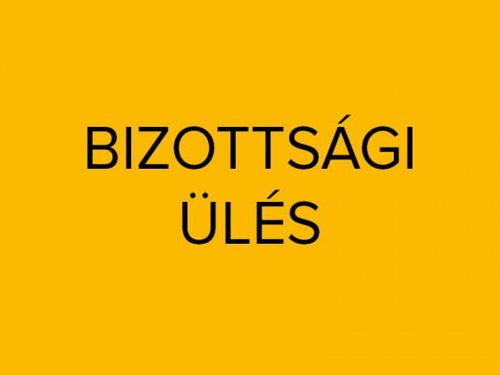 bizottsagi_ules